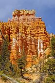image of fairyland  - The Fairyland section of Bryce Canyon National Park in Utah - JPG
