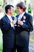 Gay couple toasting each other with champagne at their wedding.