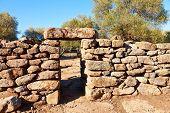picture of megaliths  - Ancient megalithic Serra Orrios Nuragic Village in Sardinia - JPG