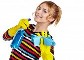 image of spring-cleaning  - Spring cleaning woman ready for spring cleaning smiling with rubber gloves and cleaning products - JPG