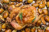 Whole Roasted Chicken with New Potatoes, Mushrooms, Lemon Edges and Garlic Cloves