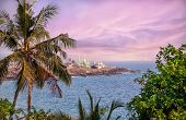 image of mosk  - View to the green Mosque near the ocean in Kovalam Kerala India