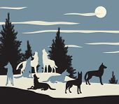 stock photo of wolf moon  - Illustration of a wolf pack howling at the moon - JPG