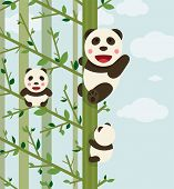 stock photo of kawaii  - Funny kawaii panda bears in trees - JPG