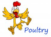 stock photo of cockerels  - Surprised cartoon cockerel character - JPG