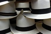 stock photo of panama hat  - White handmade panama hats for sale at the outdoor craft market in Otavalo - JPG