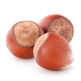 foto of filbert  - hazelnut or filbert nut isolated on white background cutout - JPG