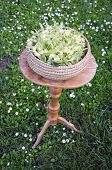 stock photo of lime-blossom  - fresh summer linden tree medical blossoms in wicker basket on table in garden - JPG