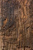 stock photo of pole  - Old wood pole stand on the ground - JPG