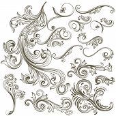 picture of swirly  - Vector set of swirl elements for design - JPG