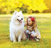 picture of dog park  - Positive child and dog having fun outdoors in the park - JPG