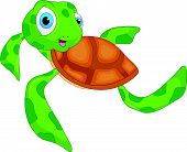 picture of sea-turtles  - vector illustration of cute sea turtle cartoon - JPG