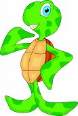 foto of terrapin turtle  - vector illustration of cute sea turtle cartoon - JPG
