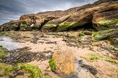 stock photo of tide  - Smugglers Cave and Saddle Rocks at Cullercoats Whitley Bay here at low tide showing the seaweed rocks and sand - JPG