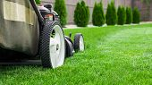 image of lawn grass  - Photograph of lawn mower on lash green grass - JPG