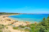 foto of shoreline  - Capo Testa shoreline with vegetation and turquoise water - JPG