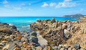 picture of shoreline  - Santa Reparata shoreline under a cloudy sky - JPG