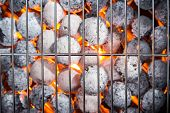 foto of blisters  - Garden grill with blistering briquettes - JPG
