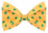 foto of bow tie hair  - Hair bow tie yellow with green dots - JPG