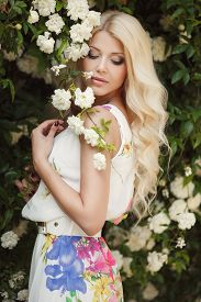 picture of wind-rose  - Gorgeous blond with long curly hair and blue eyes - JPG