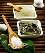 picture of sea salt  - Spa Mud and Sea Salt - JPG
