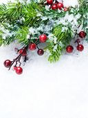 picture of christmas lights  - Christmas Tree and Decorations over Snow background - JPG