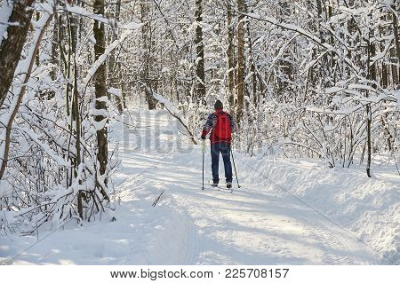 poster of Skiing Man In City Forest Park Sokolniki At Sunny Winter Day. Winter Ski Sport Free Style. Winter Sk