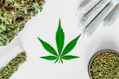Leaf Of Cannabis, Buds Of Marijuana, Joint Unrolled Weed And A Grinder With Crushed Weed On A White  poster