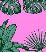 Tropical Palm Leaves On Pink Background. Minimal Nature Summer Concept. Flat Lay. Trendy Summer Trop poster