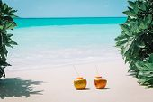 Two Coconut Drinks On Tropical Beach Vacation, Romantic At Beach poster