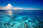 Blue shallow sea with coral reef and fluffy clouds on the horizon poster