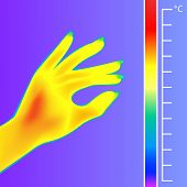 Thermal Imager Human Hand Vector Illustration. The Image Of A Silhouette Female Arm Using Infrared T poster