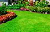Landscape Formal, Front Yard Is Beautifully Designed Garden. poster