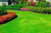 Landscape Formal, Front Yard Is Beautifully Designed Garden. poster