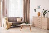 Stylish Living Room Interior With Comfortable Furniture poster