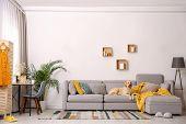 Modern Living Room Interior. Cute Golden Labrador Retriever On Couch poster