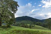 Panorama From Idyllic Landmark In Blackforest Germany poster