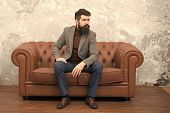 Realtor And Rental Service. Rent Apartment. Bearded Man With Confident Face Sit Leather Couch. Loft  poster