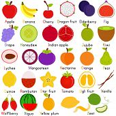 Back to school : A Set of Vector Icons of Fruit Representing Alphabet A to Z - Dictionary for Kids