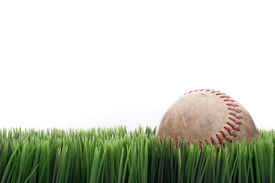 image of fescue  - A worn leather baseball in grass with a white background - JPG