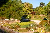 pic of bonnes  - Botanical garden in city Bonn in Germany