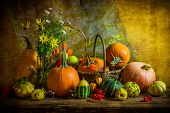 Halloween Autumn Fall Pumpkin Setting Table Still Life Vintage