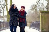 stock photo of stroll  - Cheerful friends enjoying their walk together at the winter park - JPG