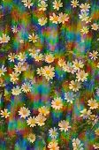 pic of hazy  - Daisy flowers on a sunny spring day - JPG