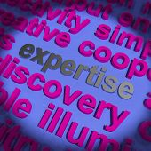Expertise Word Means Proficiency  Capabilities And Know-how