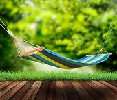picture of rest-in-peace  - Relaxing on hammock in garden in summer - JPG