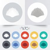 image of conch  - Sea shell sign icon - JPG