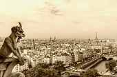 picture of gargoyles  - Gargoyle in the Cathedral of Notre Dame Paris - JPG