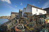 stock photo of blue crab  - Basket for crabs in St Margareth Hope - JPG