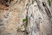 foto of incredible  - Young female rock climber on incredible wall Railay Beach in Thailand - JPG